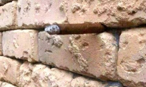 Η απίστευτη οφθαλμαπάτη που τρελαίνει κόσμο: Κανείς δεν μπορεί να δει τι υπάρχει ανάμεσα στα τούβλα!