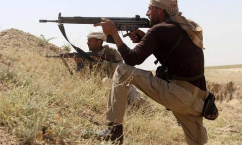 Falluja assault: Iraq PM announces beginning of military operation
