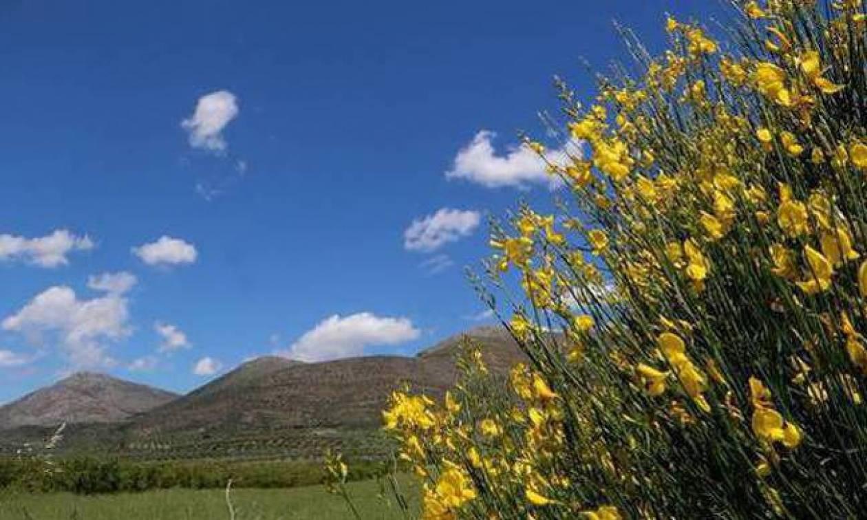 Καιρός: Με συννεφιά, τοπικές βροχές και νέα άνοδο της θερμοκρασίας η Τρίτη (pics)