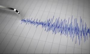 Ισχυρός σεισμός στο Νότιο Ειρηνικό - Δεν υπάρχουν ενδείξεις για τσουνάμι
