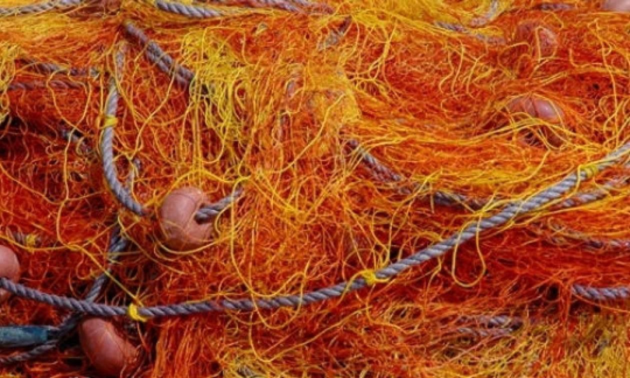 Σοκαρισμένοι οι ψαράδες στη Ρόδο - Δεν πίστευαν στα μάτια τους με αυτό που αντίκρισαν στα δίχτυα