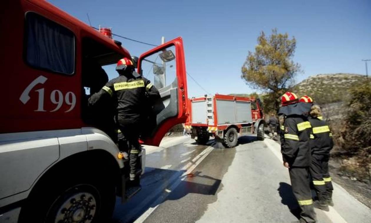 Ο χάρτης πρόβλεψης κινδύνου πυρκαγιάς για την Πέμπτη 2/6 - Δείτε τις οδηγίες προστασίας