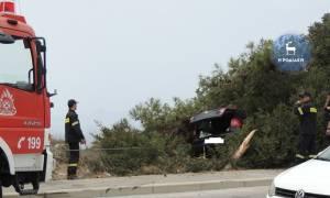 Ρόδος: Το δέντρο της έσωσε τη ζωή! (vid)