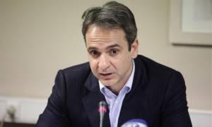 Οικονομία και προσφυγικό στη συνάντηση Μητσοτάκη - Βαλς