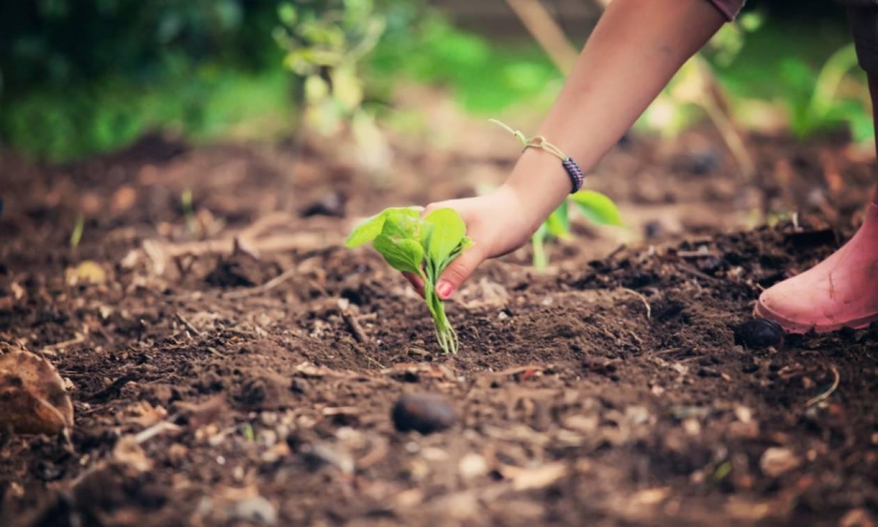 Πώς θα μάθετε στα παιδιά σας να ανακυκλώνουν σωστά