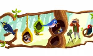 Phoebe Snetsinger: Η Google τιμά με Doodle τη διάσημη παρατηρητή πουλιών