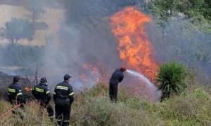 Υπό έλεγχο η φωτιά στην Κνωσό - Δεκάδες στρέμματα έγιναν στάχτη