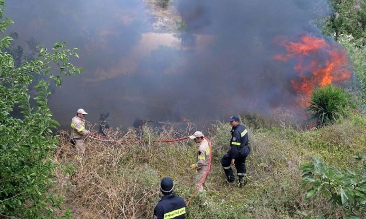 Συναγερμός στην Πυροσβεστική: Φωτιές σε Ηράκλειο και Ρέθυμνο