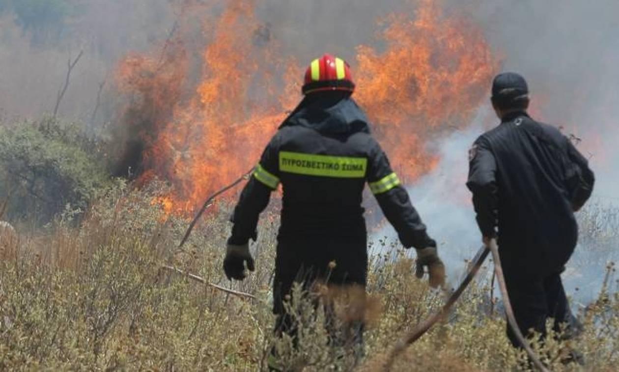 Ρέθυμνο: Πάνω από 1000 στρέμματα έγιναν στάχτη από την πυρκαγιά που μαίνεται