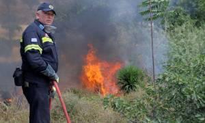Μεγάλη φωτιά καίει τη Νέα Πέραμο Αττικής