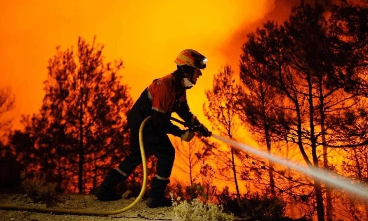 Πέντε φωτιές περικύκλωσαν την Αττική σε ένα 24ωρο