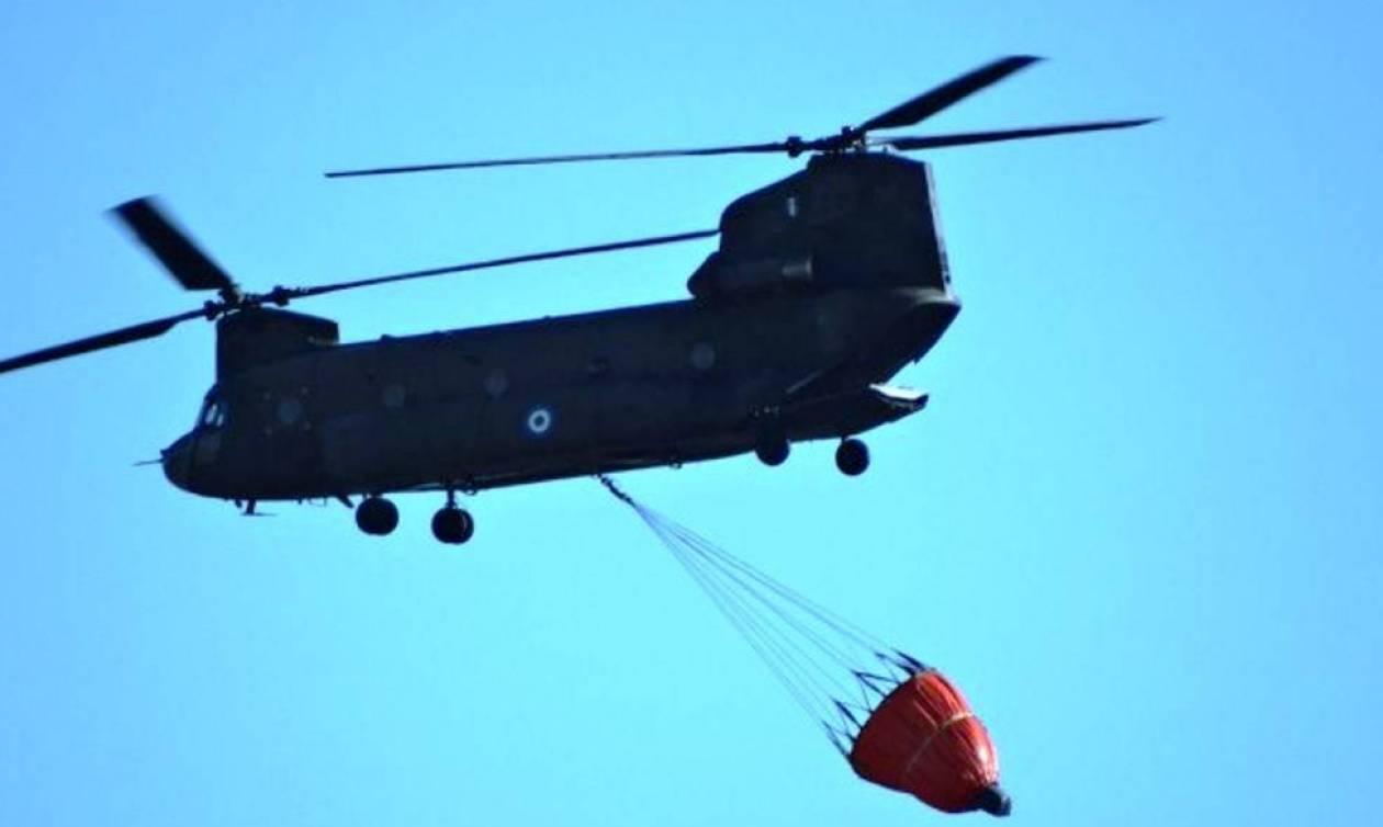 Συνεισφορά Στρατού Ξηράς στην Κατάσβεση Πυρκαγιών στην Αττική (pics)