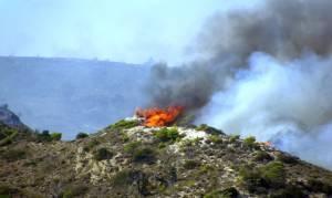 Υπό έλεγχο η φωτιά στο Βαρνάβα Αττικής