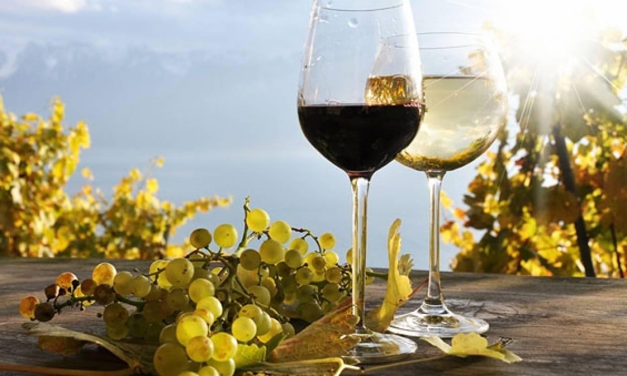 «Χρυσές» εξαγωγές για το ελληνικό κρασί στη Ν. Κορέα