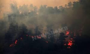 Καίγεται η Κύπρος: Νέα αναζωπύρωση της φωτιάς - Εκκενώνονται χωριά (pics + video)