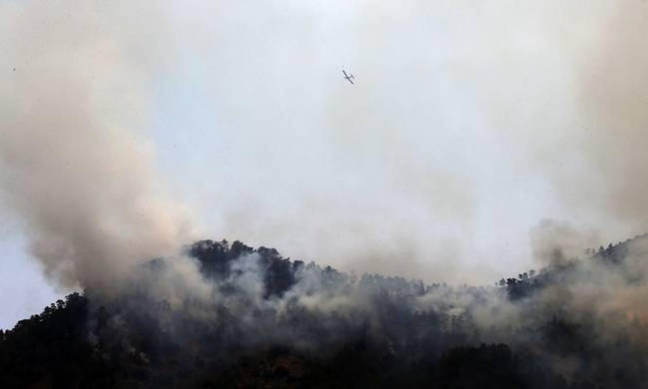 Πύρινη κόλαση στην Κύπρο - Απομακρύνουν τους κατοίκους (pics + video)