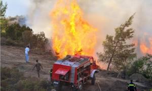 Έσβησε η φωτιά στην Εύβοια – Σε ύφεση οι πυρκαγιές σε Άλσος Συγγρού και Αρχαία Ολυμπία