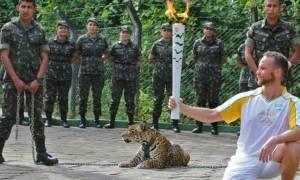 Το βίντεο της φρίκης: Σκότωσαν τζάγκουαρ σε τελετή για τους Ολυμπιακούς του Ρίο!