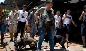 Συγκλονιστική επιχείρηση διάσωσης από ακτιβιστές στην Κίνα