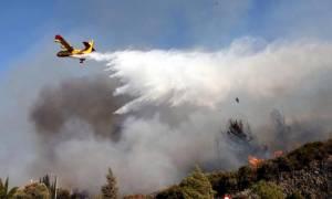 Σε κατάσταση έκτακτης ανάγκης η Ρόδος λόγω των πρόσφατων πυρκαγιών