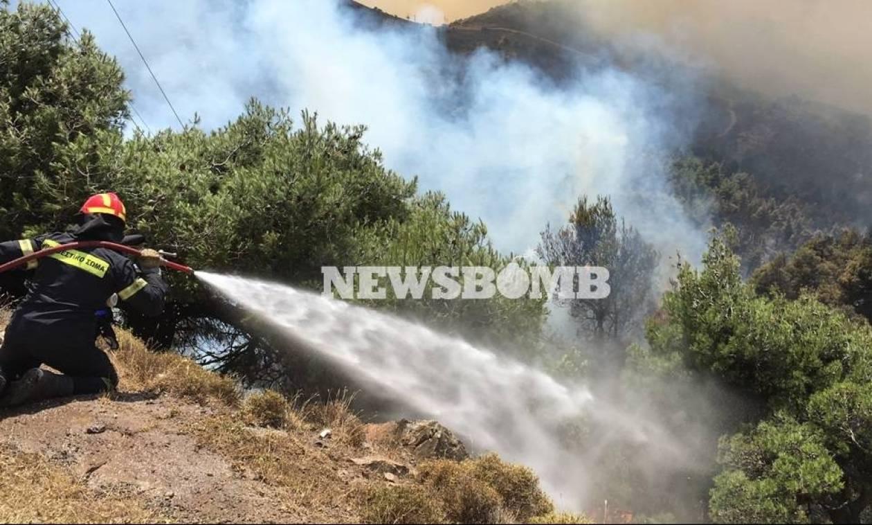 Φωτιά Δερβενοχώρια - Συγκλονιστική μαρτυρία: Είδα το καναντέρ να πέφτει (vid)