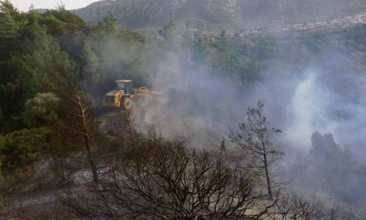 Φωτιά Δερβενοχώρια: Στη Στεφάνη Βοιωτίας το κύριο μέτωπο της φωτιάς
