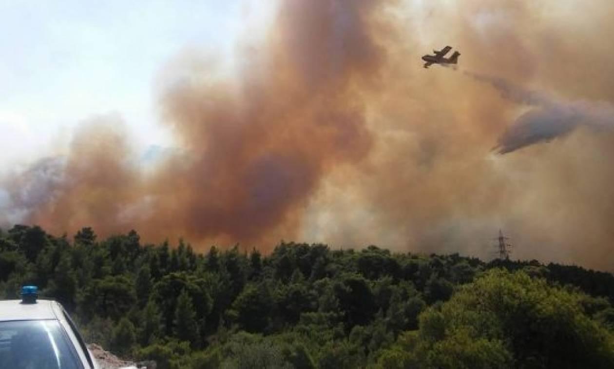 Φωτιά Δερβενοχώρια: Σε δύο μεγάλα μέτωπα μαίνεται η μεγάλη πυρκαγιά