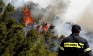 Φωτιά Δερβενοχώρια: Πύρινη κόλαση για τέταρτη ημέρα