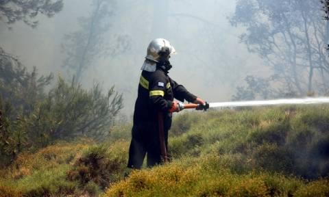 Τώρα: Φωτιά στο Σχηματάρι (videos)