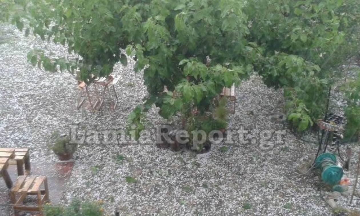Καιρός: Καταιγίδα και χαλάζι «κύκλωσαν» την πόλη της Λαμίας (pics)