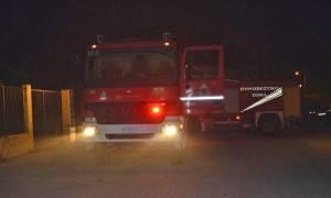 Τρόμος στην Ολυμπία: Ξύπνησαν το πρωί και είδαν αυτό (photo)