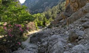 Θρίλερ με τουρίστα στην Κρήτη