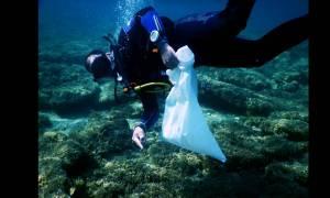 Δύτες καθάρισαν τη θάλασσα στο Λαγονήσι (pics)