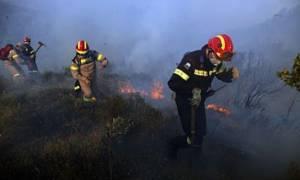 Υπό μερικό έλεγχο η φωτιά στη Λάρυμνα