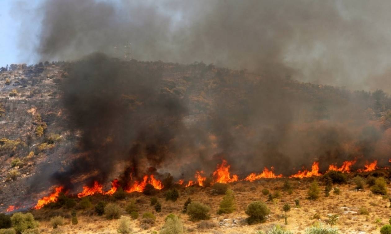 Έσβησε η φωτιά στην Παλλήνη