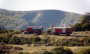 Συναγερμός στα Κύθηρα: Φωτιά καίει δασική έκταση