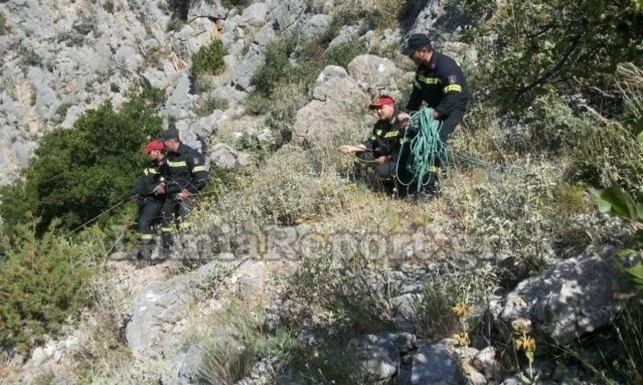 Φθιώτιδα: Νεκρός σε χαράδρα βρέθηκε αγνοούμενος άνδρας