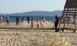 Συναγερμός στην ΕΛ.ΑΣ: Εκκενώθηκε παραλία στον Σχοινιά