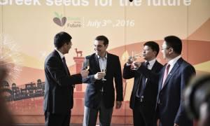 Πεκίνο: Ο Τσίπρας φλερτάρει με τη «Χώρα του Δράκου» για επενδύσεις
