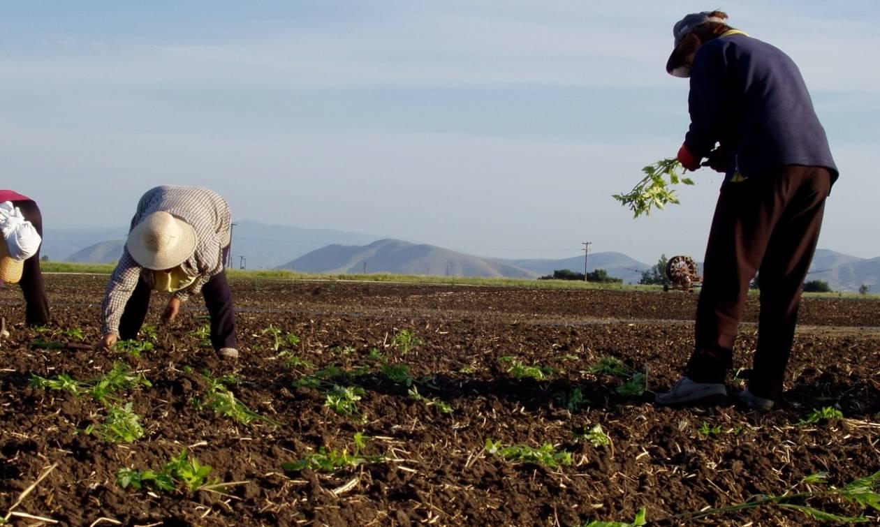 Απειλούνται με κατασχέσεις 71.000 αγρότες