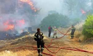 Συναγερμός στην Ναυπακτία: Μεγάλη φωτιά σε δασική έκταση