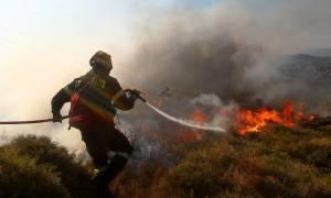 Υπό έλεγχο η φωτιά στη Ναυπακτία