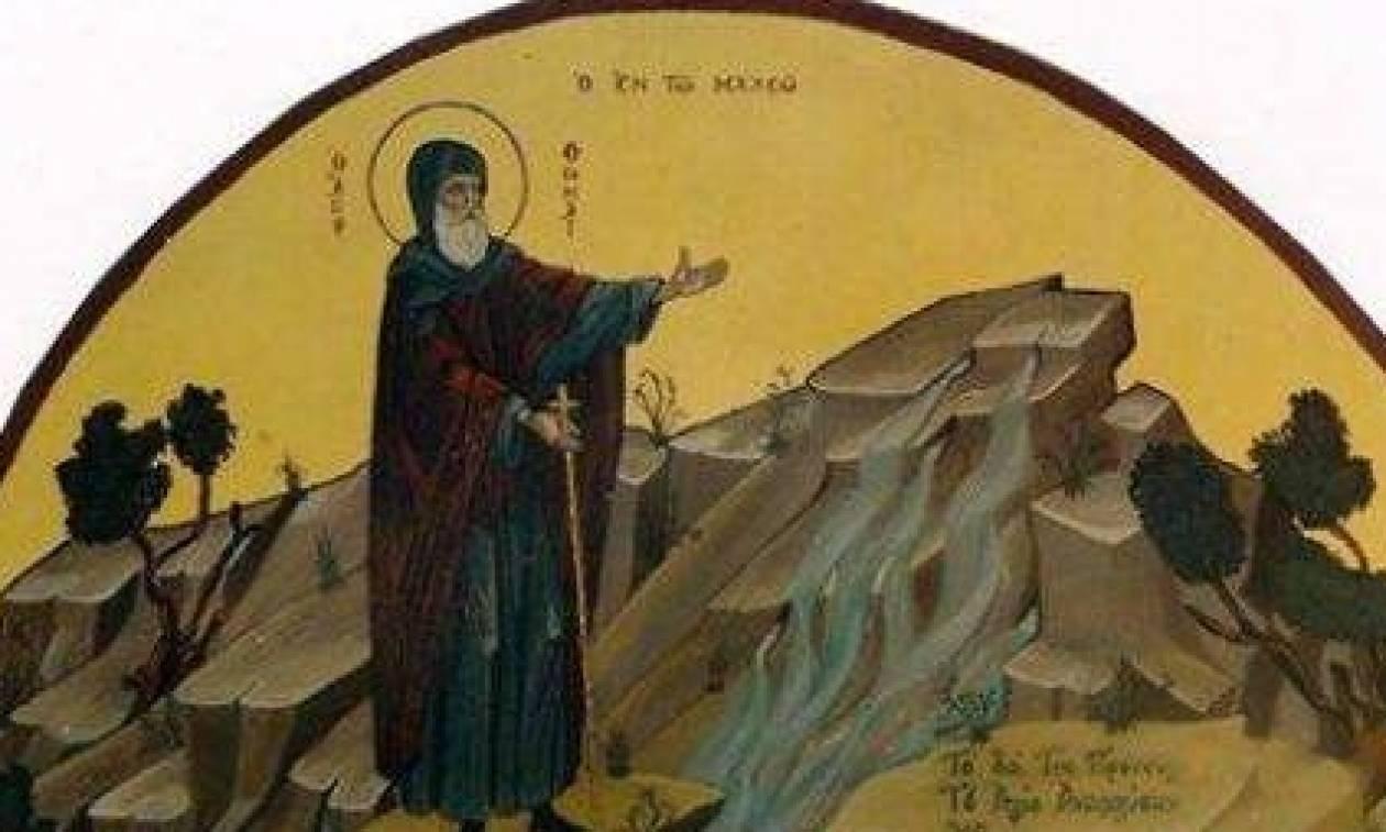 Σήμερα εορτάζει ο Όσιος Θωμὰς ο εν Μαλεώ