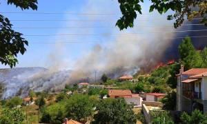 Φωτιά στην Κυνουρία Αρκαδίας- Απειλούνται σπίτια (pics+vid)