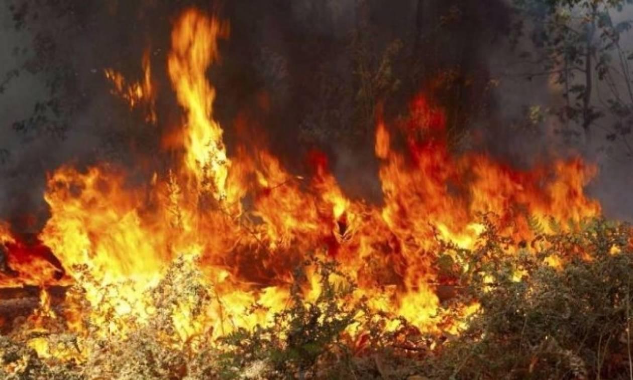 Μεγάλη φωτιά στη Λέρο - Απειλεί κατοικημένες περιοχές