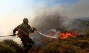 Μεγάλη πυρκαγιά στη Μόρφα Αυλίδας