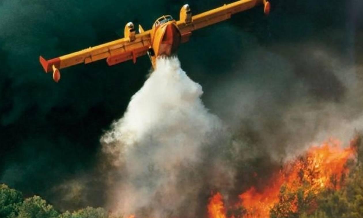 ΠΡΟΣΟΧΗ: Σε αυτές τις περιοχές είναι πολύ υψηλός ο κίνδυνος πυρκαγιάς σήμερα