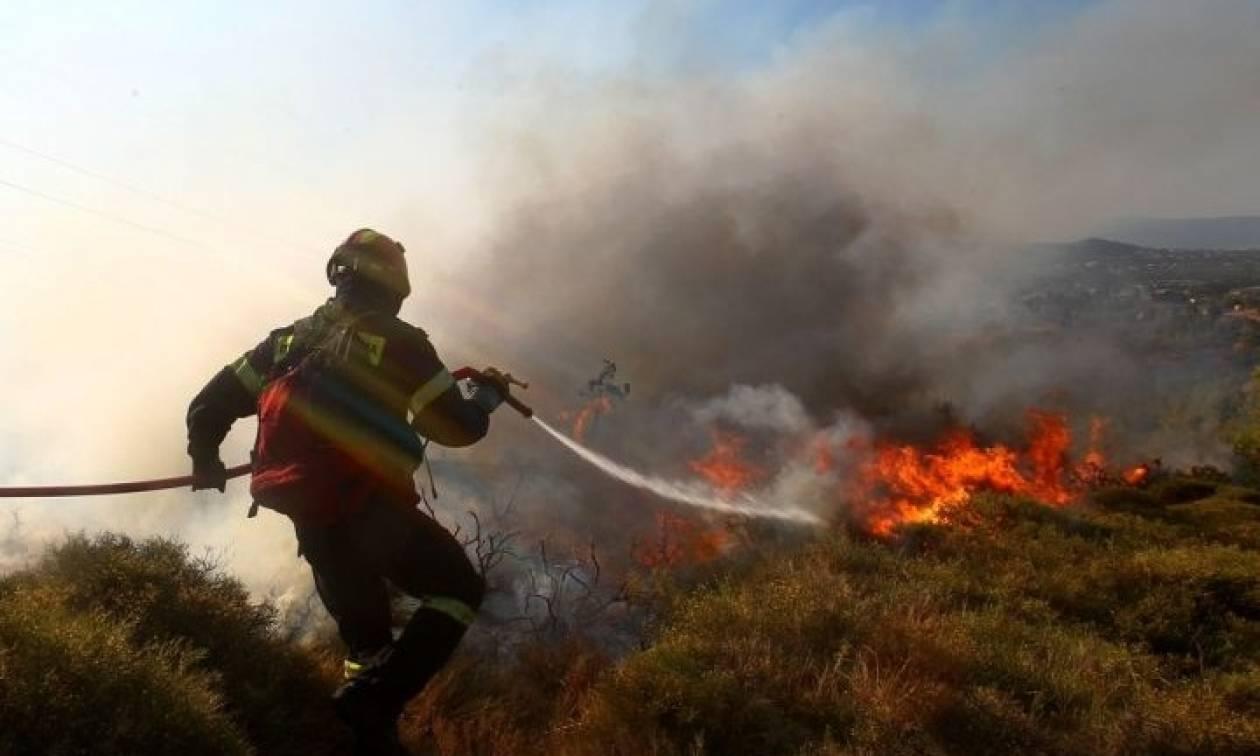 Πυρκαγιά στο Βέρμιο