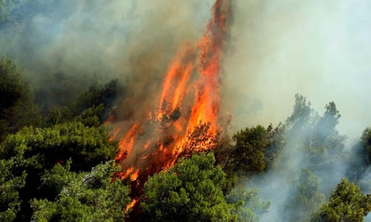 Φωτιά στην Κέρκυρα – Σε συναγερμό το αεροδρόμιο