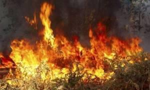 Νέο μέτωπο φωτιάς στην Αιγάνη -  Μαίνεται η πυρκαγιά στους Παλαιούς Πόρους